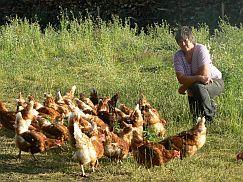 Birgit mit Hühnern
